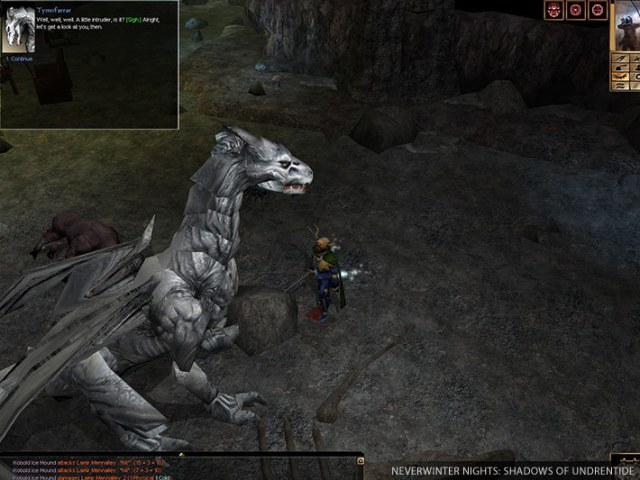 neverwinter nights dragon